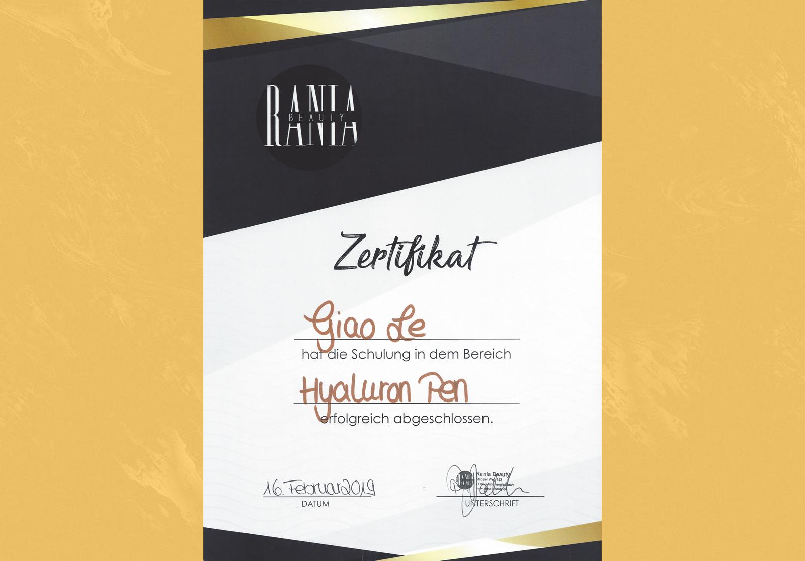 Zertifikat Hyaluron Pen